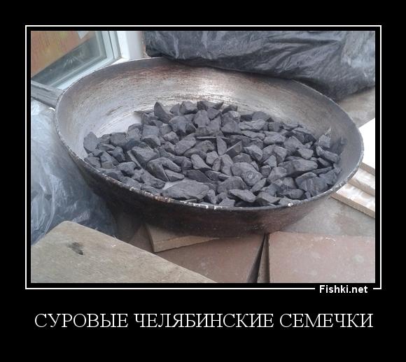 Суровые Челябинские семечки