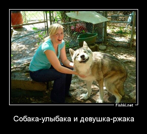 Собака-улыбака и девушка-ржака