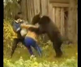 Подборка видео жести с участием животных