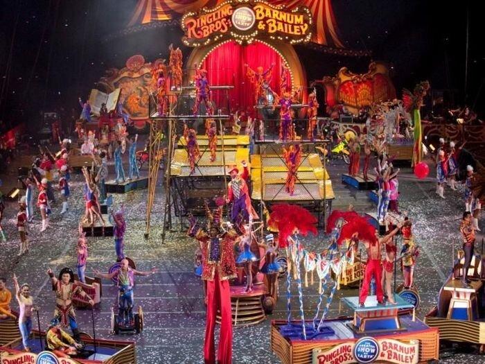 Самые удивительные цирки в мире (10 фото)