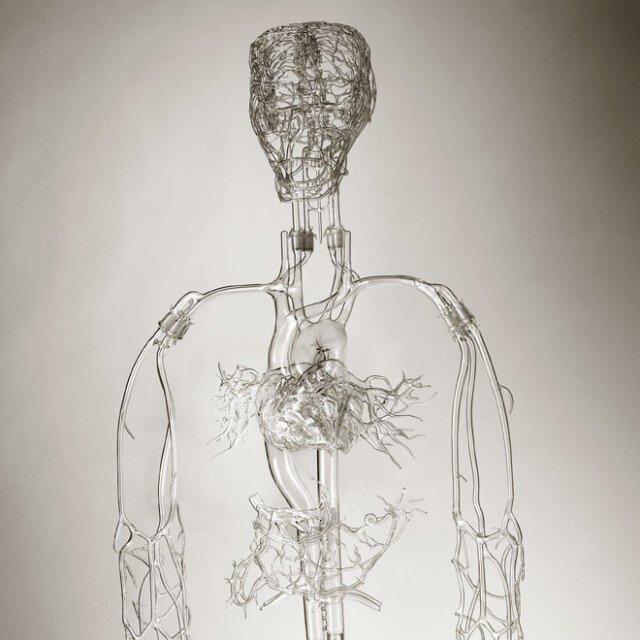 Glass Bones