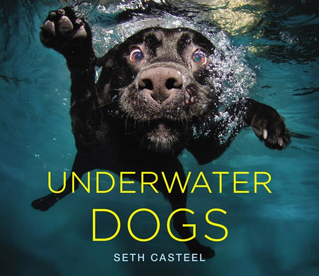 Underwater Dogs от Kaye за 24 oct 2012
