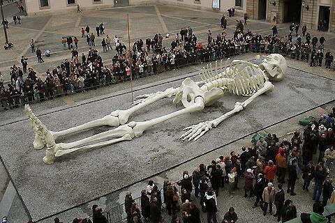 Giant's Skeleton Revealed!