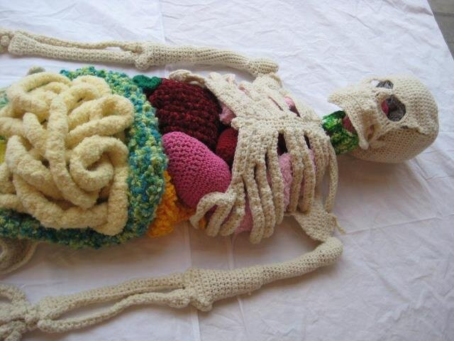 """Lab"" Knitted Skeleton and Organs By Artist Shanell Papp"