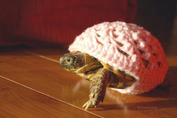 A Sweater for Your Turtle By Katie Bradley от Marinara за 03 apr 2013