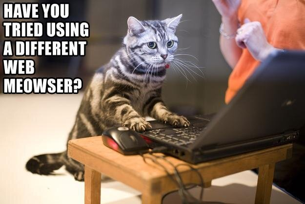 Cats from IT Department Memes