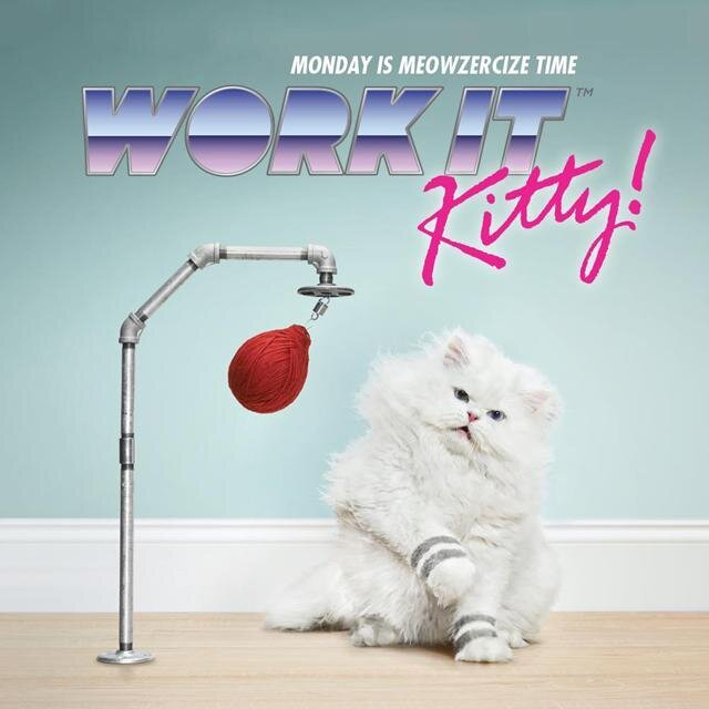 """Work It Kitty!,"" an Exhilarating Feline Aerobics Promo for Temptations Cat Treats"