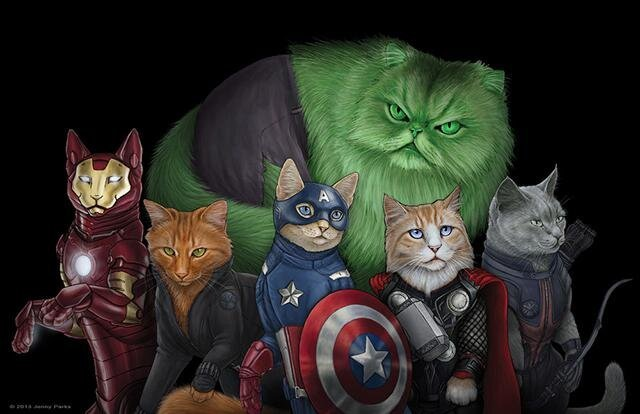 Superheroes Cats