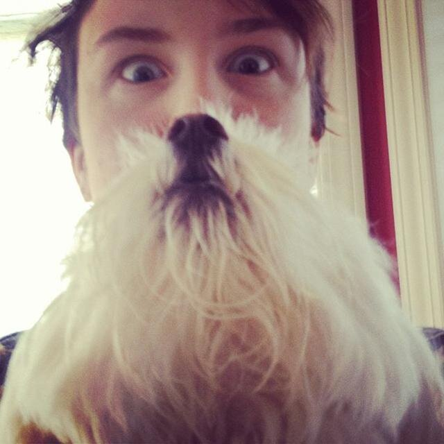 Dog Beards as an Answer to Popular 'Cat Beards' Meme от Marinara за 23 may 2013