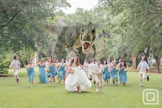 The Best Wedding Party Photo