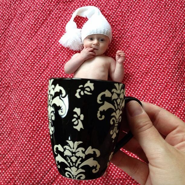 Baby Mugging, Newest Cute and Funny Photo Meme of Babies in a Mug