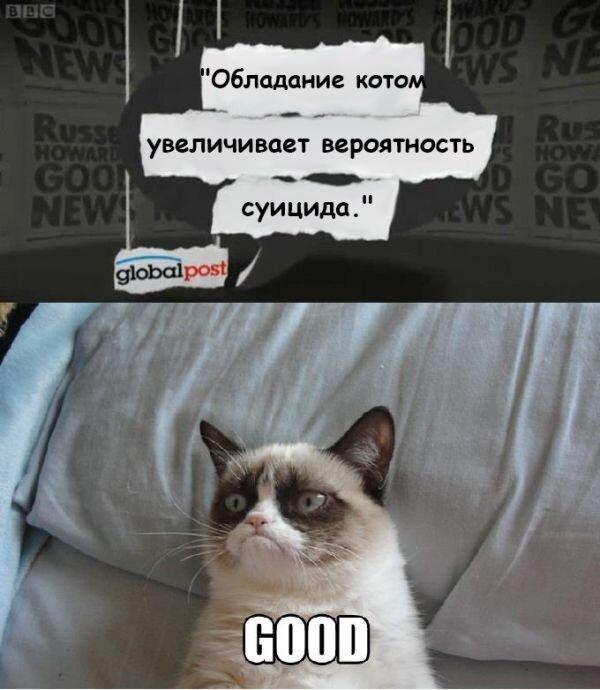 Новые фото от zubrilov за 29 ноября 2012