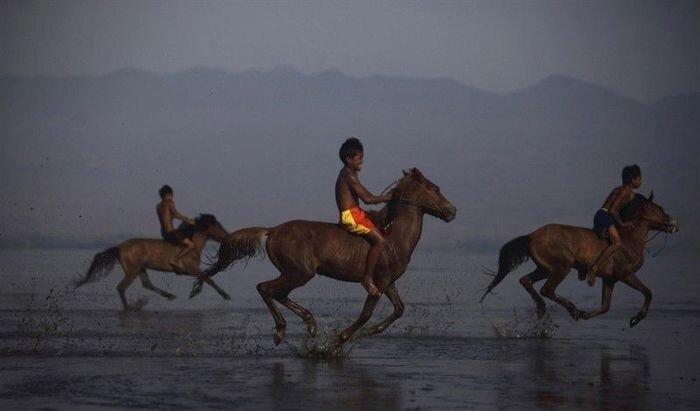 Детские скачки (10 фото)