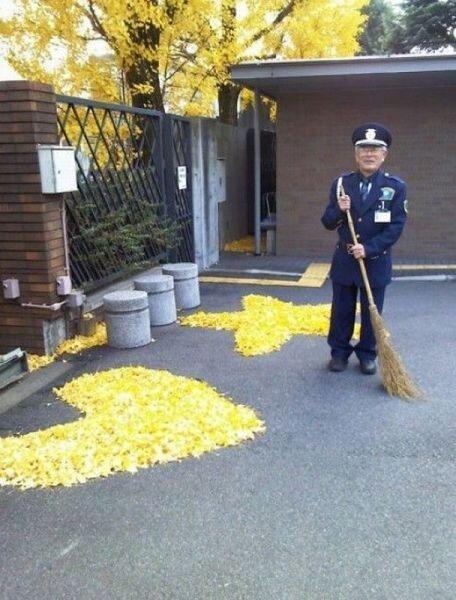 Фото онлайн от zubrilov за 03 декабря 2012