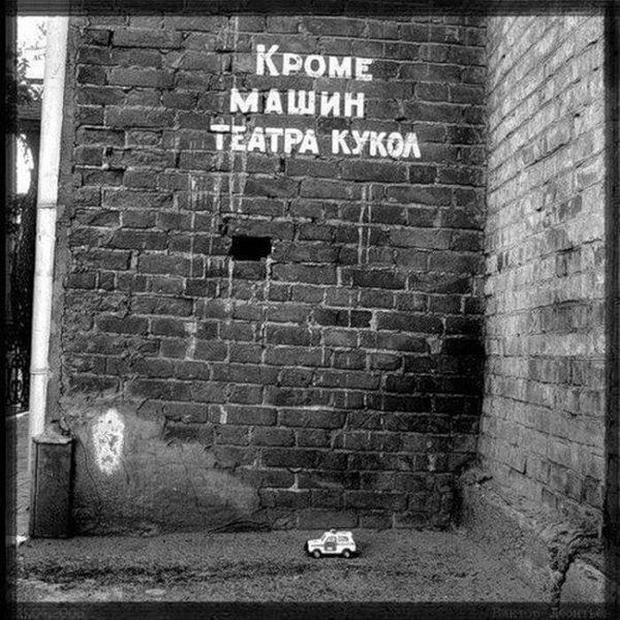 Прекрасные фото от zubrilov за 06 декабря 2012