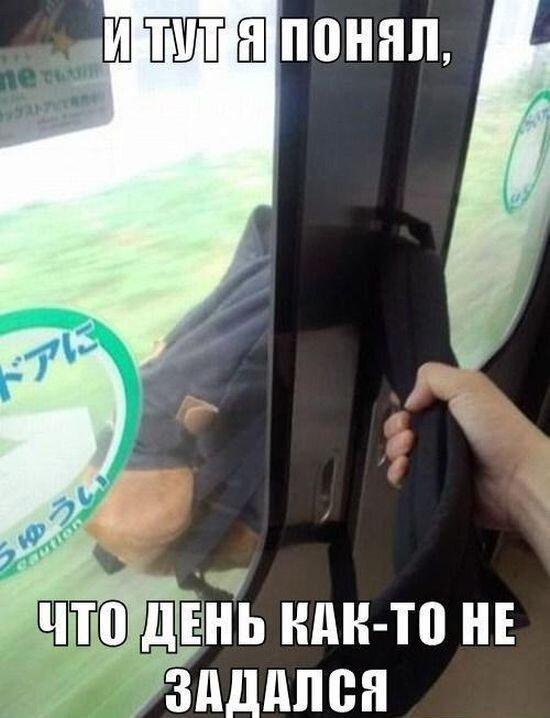 Шикарное фото от zubrilov за 06 декабря 2012