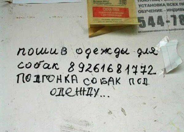 Зачетное фото от zubrilov за 07 декабря 2012