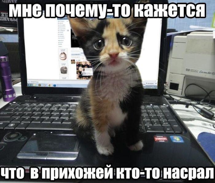 Улетное фото от zubrilov за 10 декабря 2012