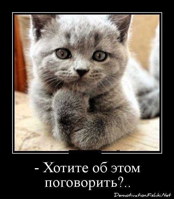 Демотиваторы, часть 317. от zubrilov за 10 декабря 2012
