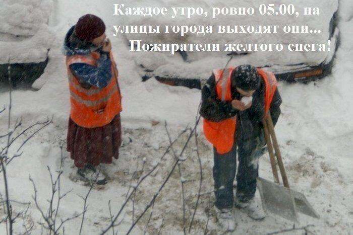 Юмор от zubrilov за 11 декабря 2012