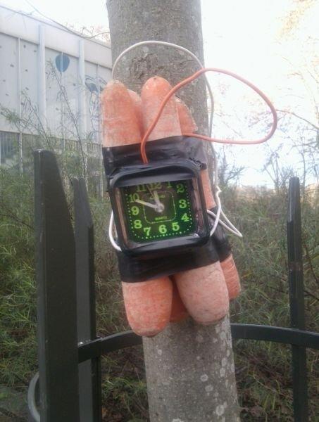 Смешной фотоприкол от zubrilov за 14 декабря 2012
