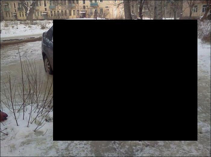 Природная противоугонная система (3 фото)