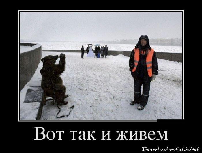Демотиваторы, часть 321. от zubrilov за 19 декабря 2012