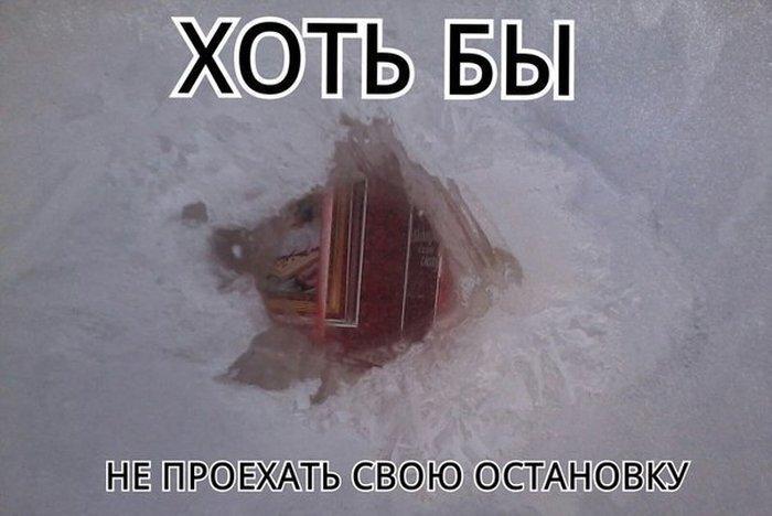 Шикарное фото от zubrilov за 19 декабря 2012