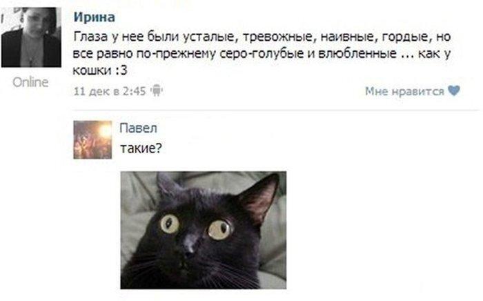 Новый фотоприкол от zubrilov за 24 декабря 2012