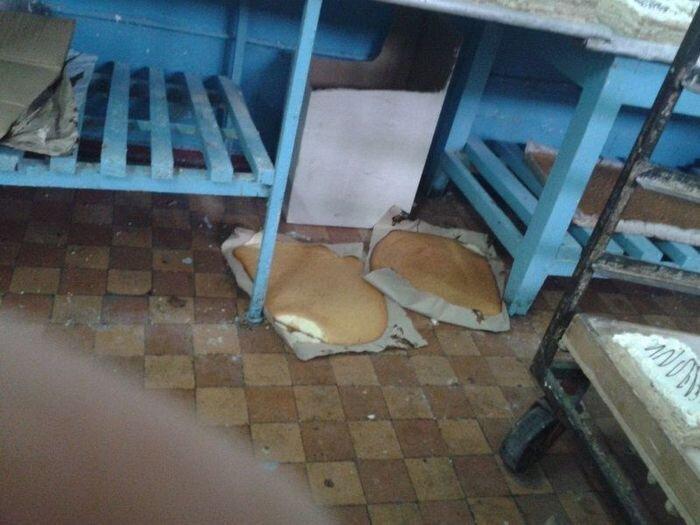 Украинская пекарня. Жесть. (8 фото)