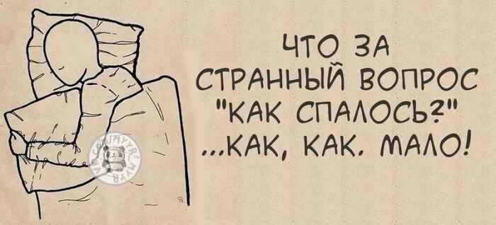 Прикольные фото от zubrilov за 28 декабря 2012