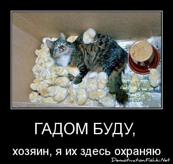 гадом буду,  от serchaika за 28 декабря 2012