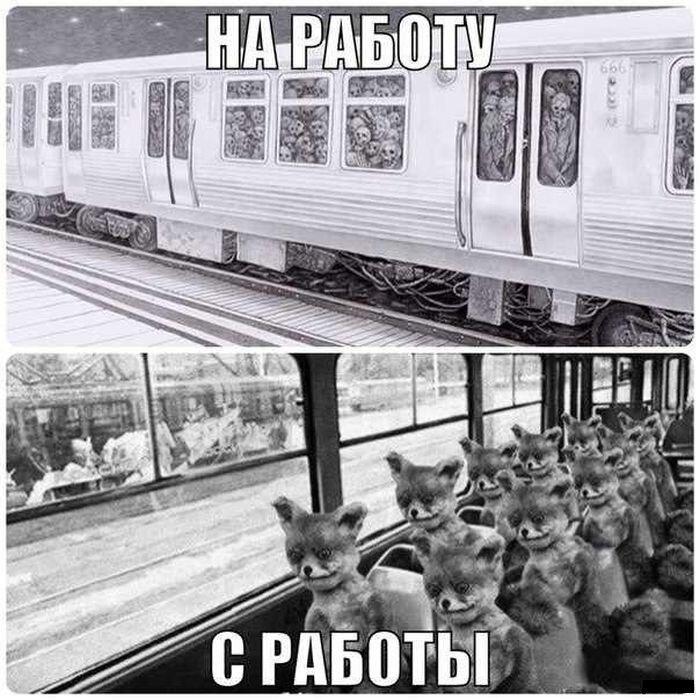 Прикольные фото от zubrilov за 16 января 2013