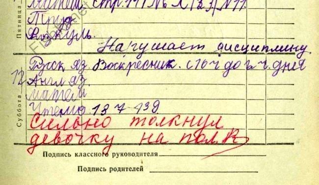 Школьный дневник (27 фото)