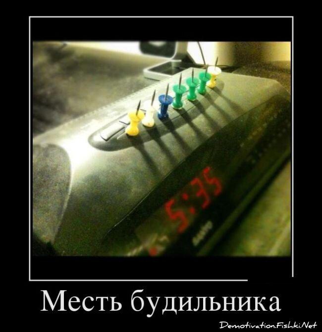 Демотиваторы, часть 331. от zubrilov за 18 января 2013