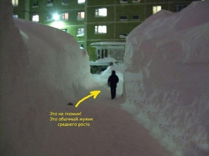 Смешные картинки от zubrilov за 18 января 2013