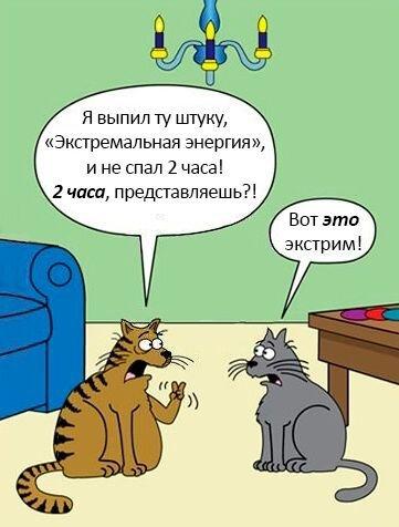 Бесплатно фото от zubrilov за 21 января 2013