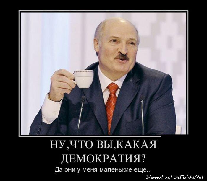 Демотиваторы, часть 335. от zubrilov за 28 января 2013