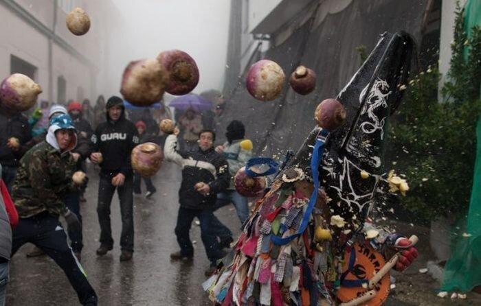 Фотоприкол фото от zubrilov за 31 января 2013