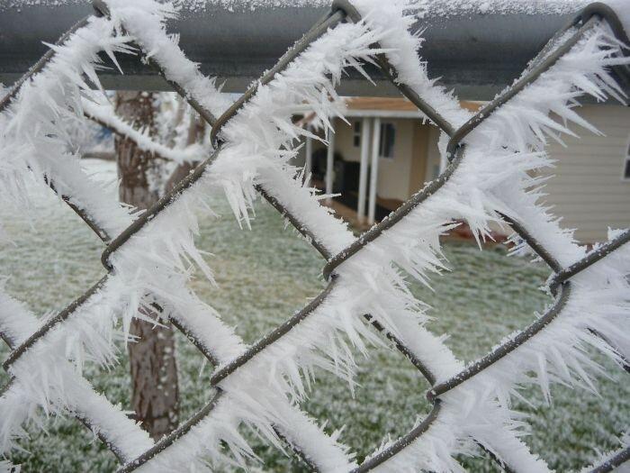 Отпадные фотки от zubrilov за 31 января 2013