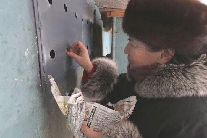 Котоненависть в Минске (8 фото)