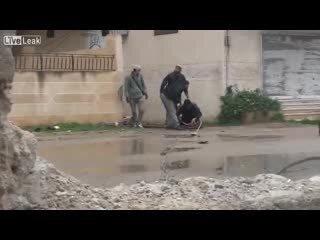 Подборка роликов от 11.02.2013