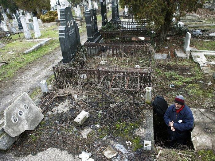 Бездомный нашел укрытие на кладбище (8 фото)