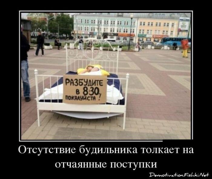 Демотиваторы, часть 344. от zubrilov за 18 февраля 2013
