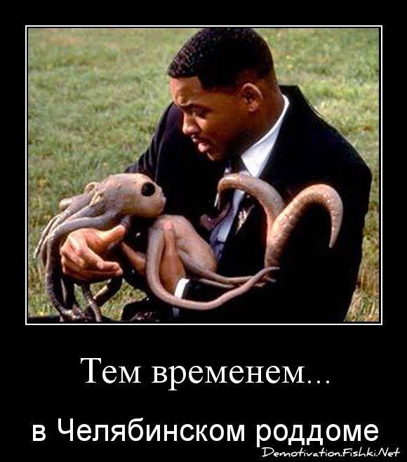 Тем временем... от zubrilov за 20 февраля 2013
