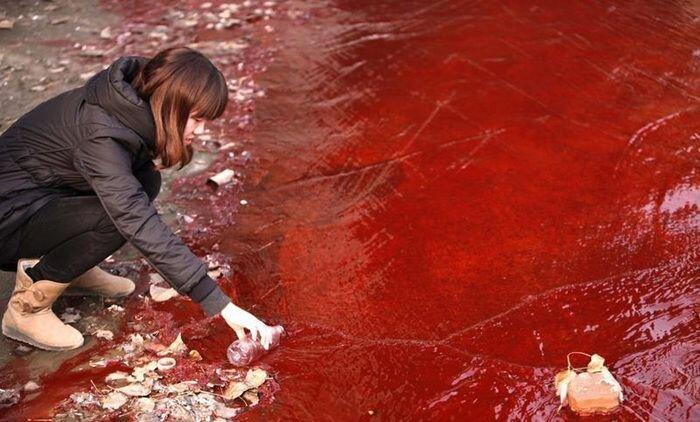 Загрязнение воды в Китае (8 фото)