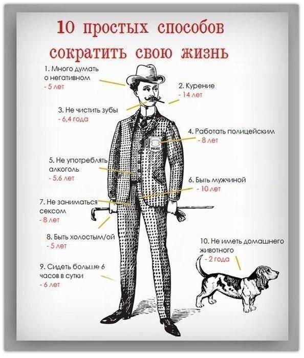 Фотоприкол онлайн от zubrilov за 27 февраля 2013