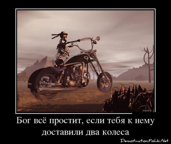 Демотиваторы, часть 349. от zubrilov за 01 марта 2013