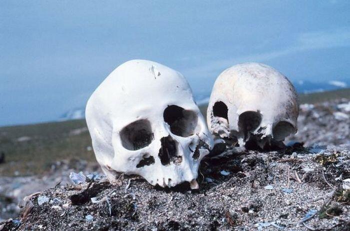 Кладбище Берингова моря (3 фото)