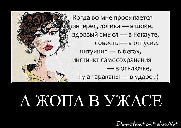 А ЖОПА В УЖАСЕ